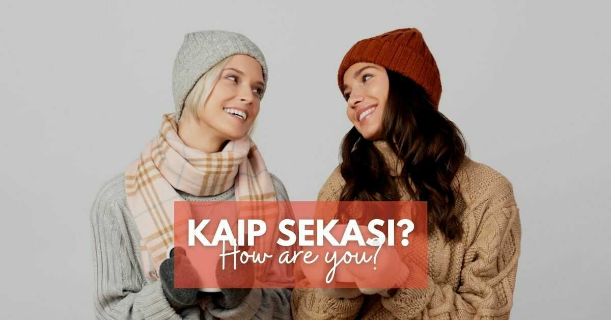 How are you? in Lithuanian