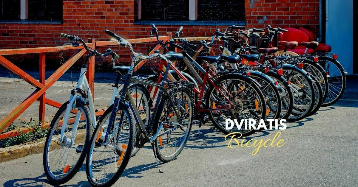 Lithuanian Vocabulary About Transportation | Bicycle
