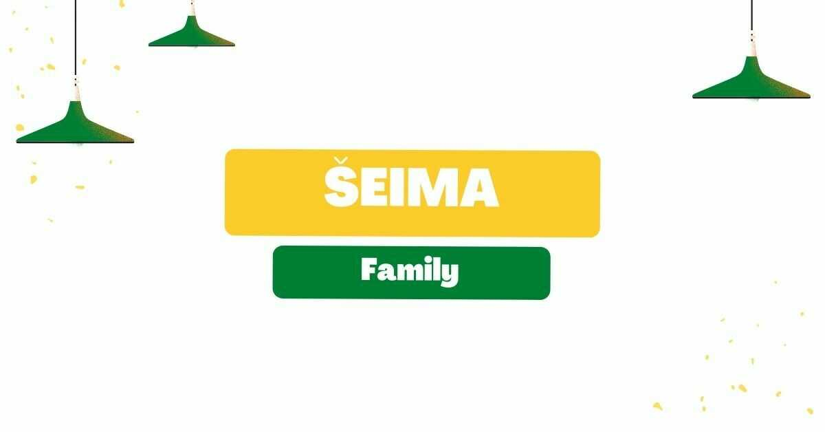 Lithuanian Vocabulary For Family